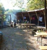 Urwald macht Schule – Klasse 3.1 im Wildniscamp