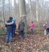 Klasse 2.2 feiert Waldweihnacht